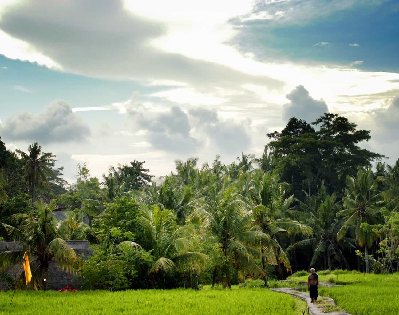 Bali is know for their beautiful and stunning views.
