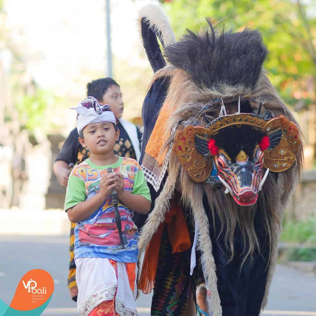 Once or twice a year you will see the children of Bali walking around the streets with the Barong.